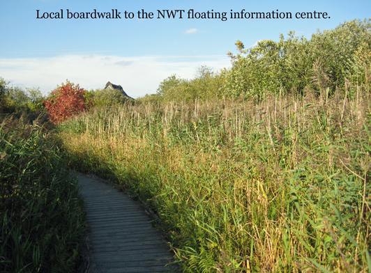 The Boardwalk in Ranworth