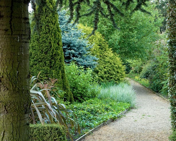 Woodland Path at East Ruston Gardens