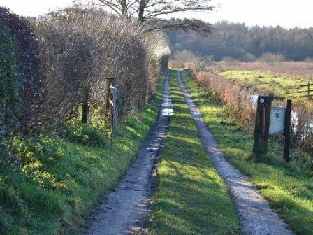 Track To Marsh Cottage