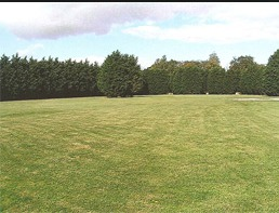 Extensive pitch area at Broad Farm Holiday park