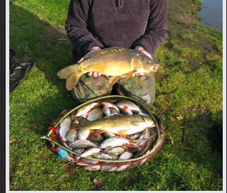 A great days catch at Cobbleacre camping and fishing