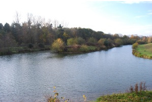 Lake view at Cobbleacre fishing lake