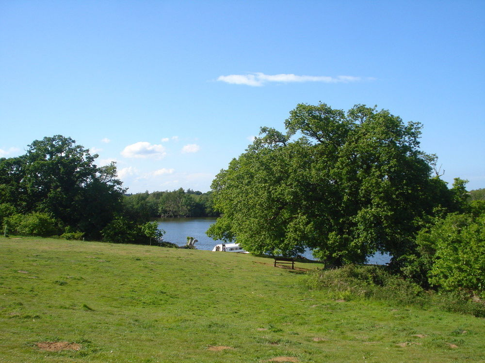 View of Salhouse Broad
