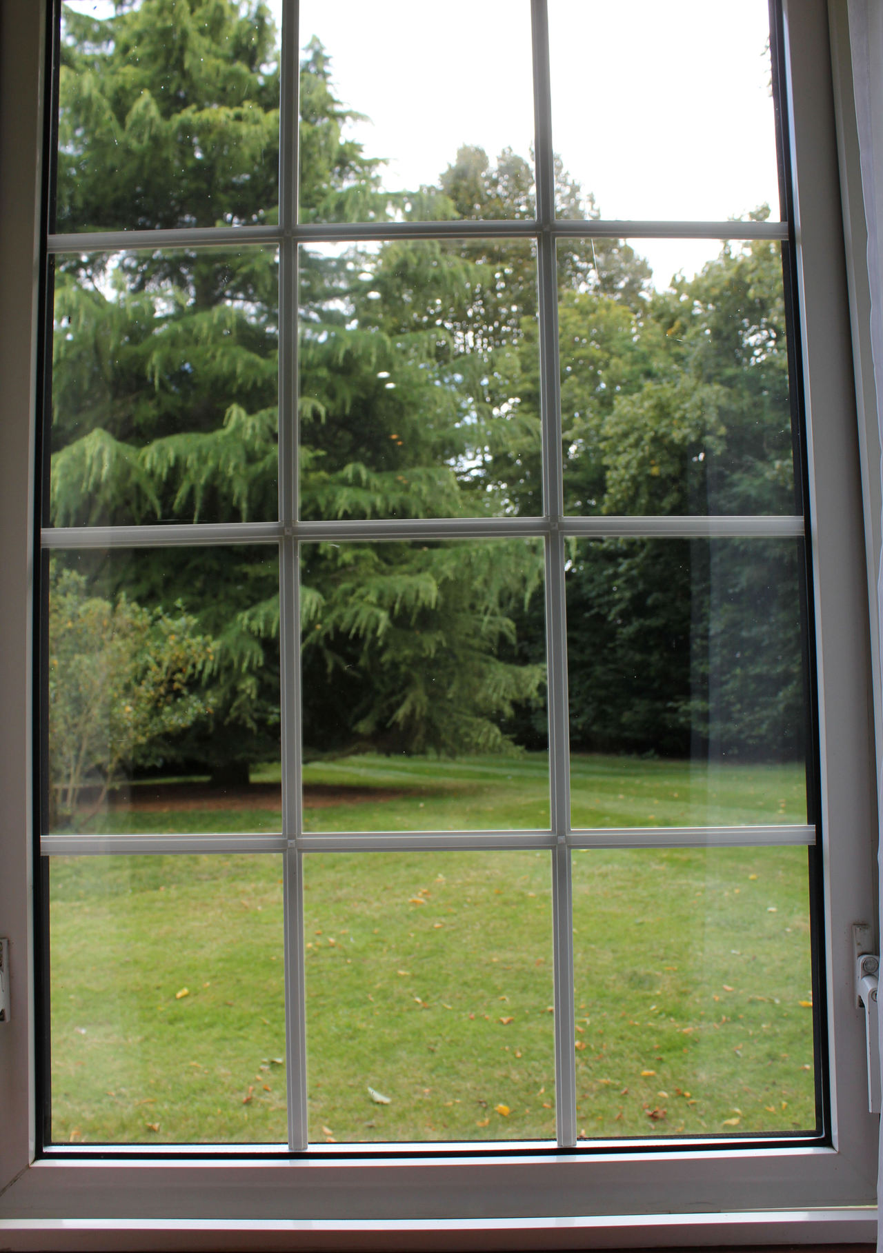 View from one of the windows at The Old Rectory Hotel Crostwick