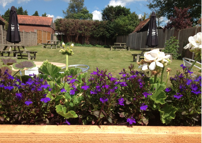 Back garden and beer garden at the Red Lion in Coltishall