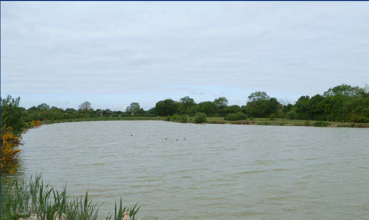 Topcroft fishing lakes near bungay on the norfolk broads