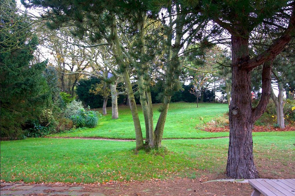 Rear Garden of Wayford Bridge Inn