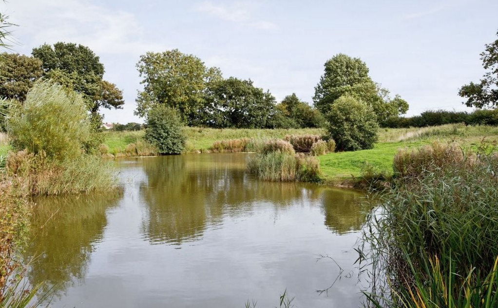 Fishing Lake at Grove Farm Barns Catfield
