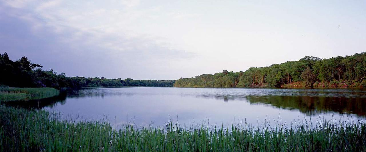 Fritton Lake1