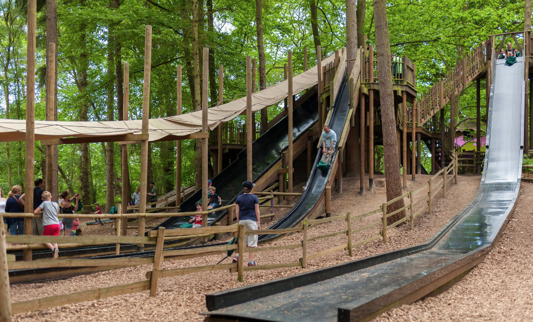 Bewilderwood Slides