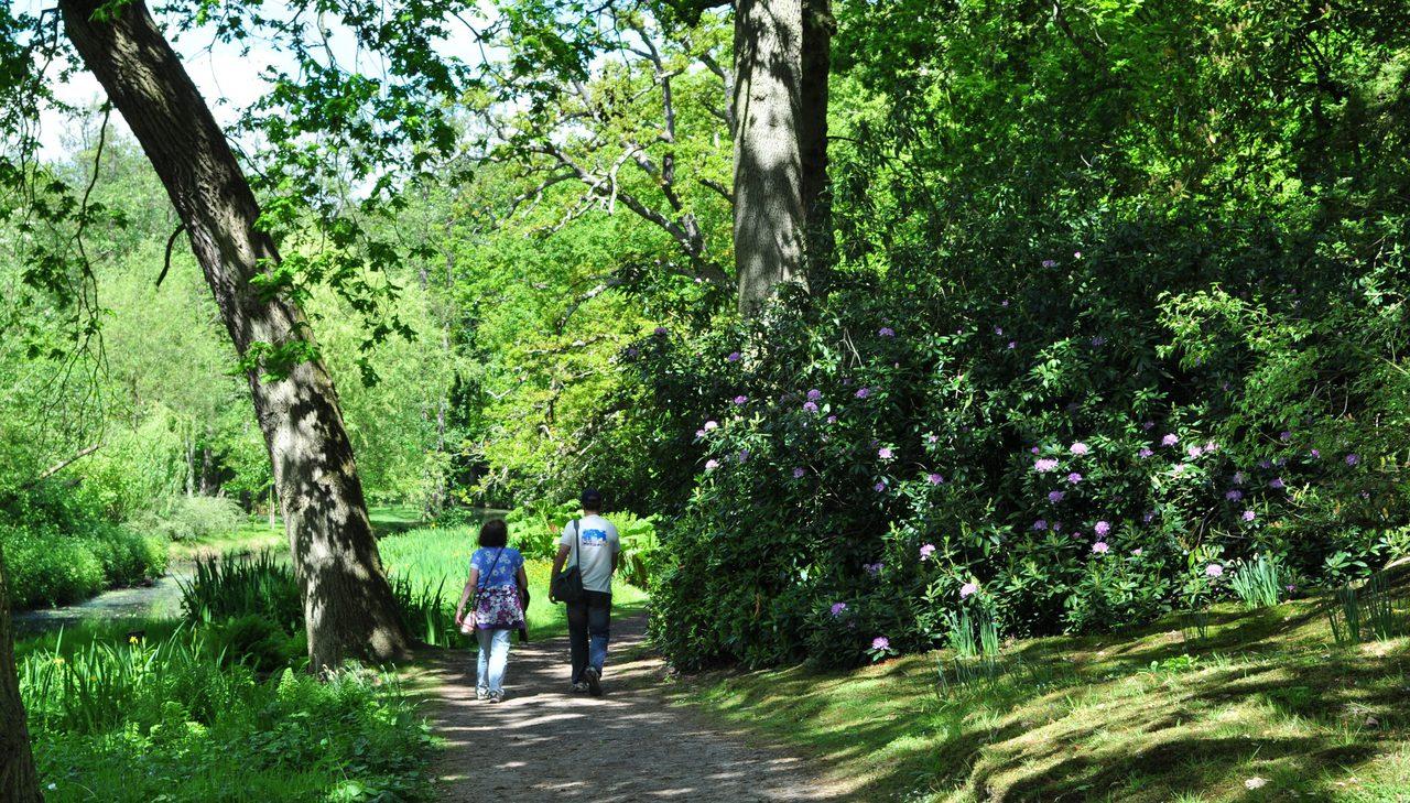 Fairhaven Woodland And Water Garden Footpath 2