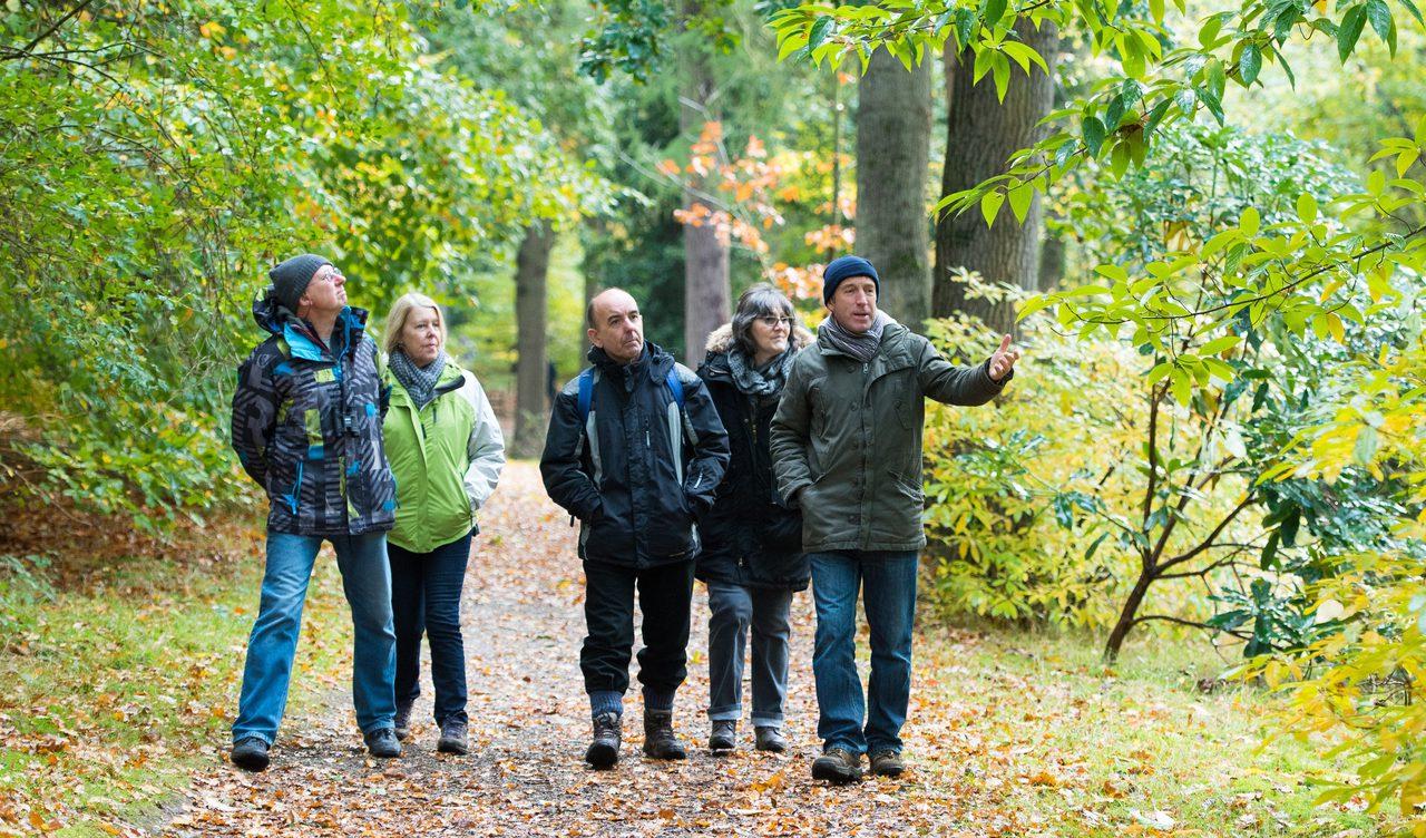 Fairhaven Garden Ian Guest Autumn Walk