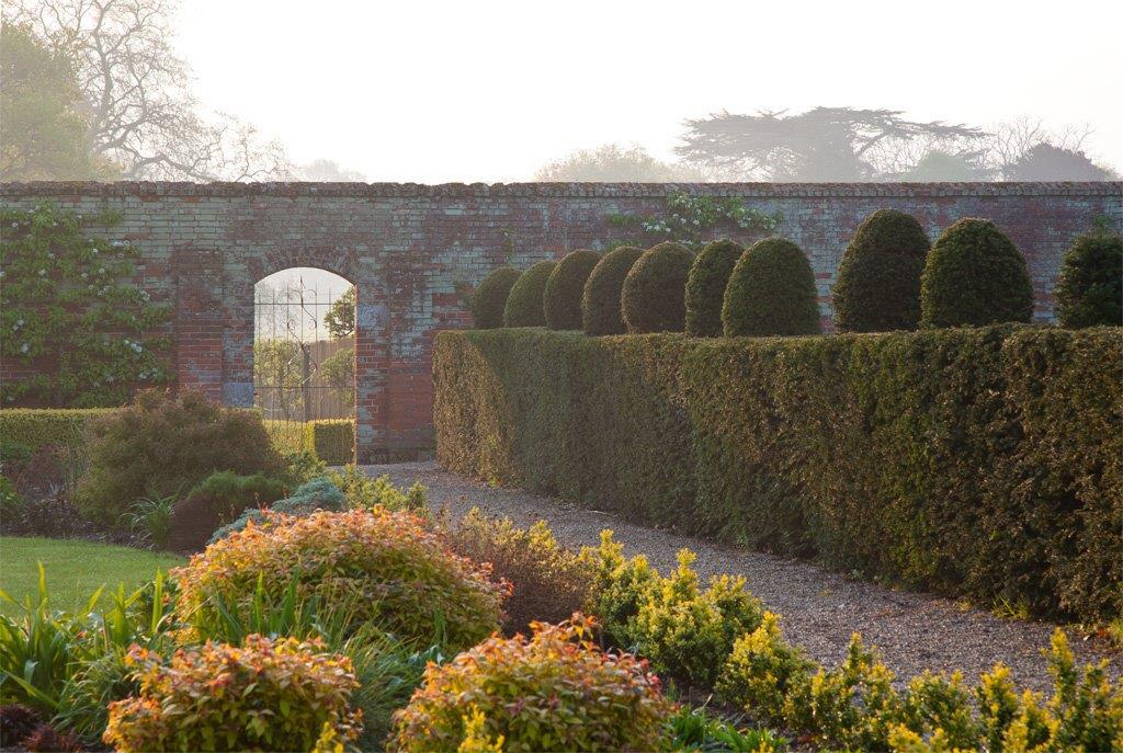 Hedge Border To Gate