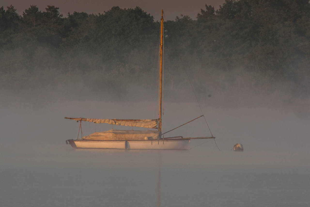 Misty morning on Hickling Broad