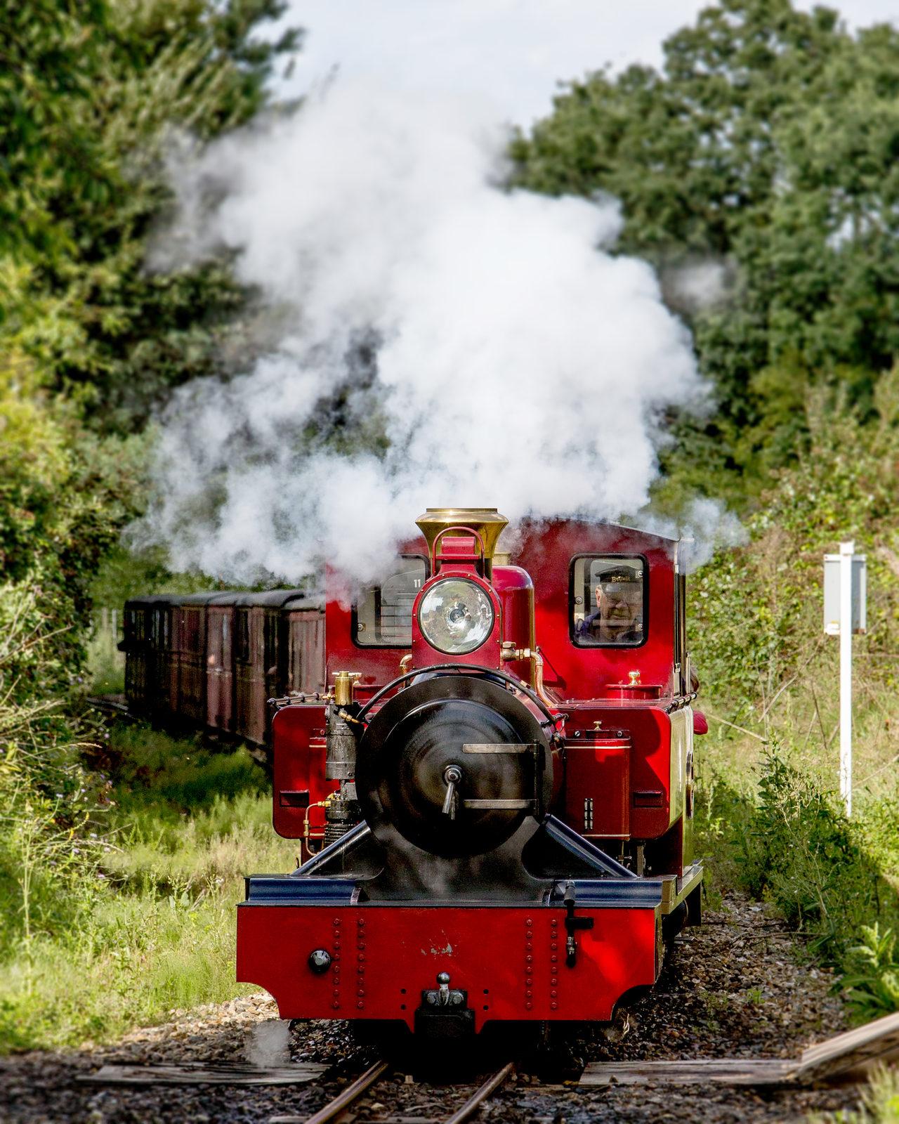 Bure Valley Railway 71 Copy