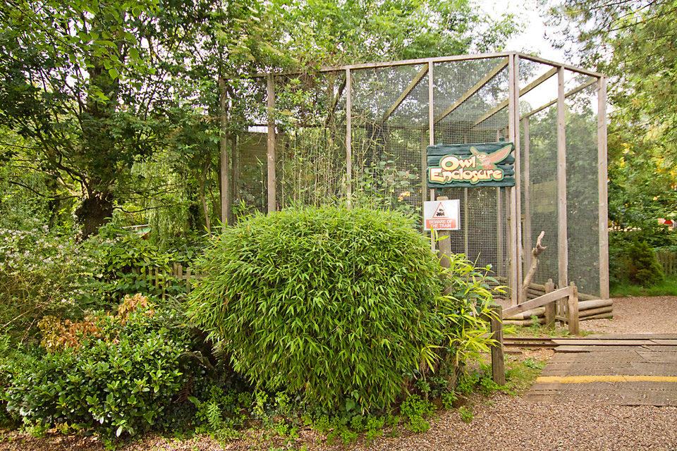 Owl Enclosure 118A