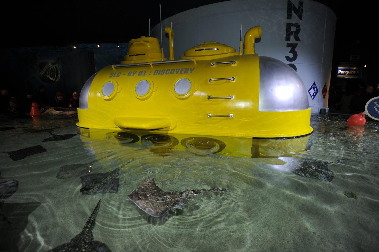 Jd Sealife Yellow Submarine86